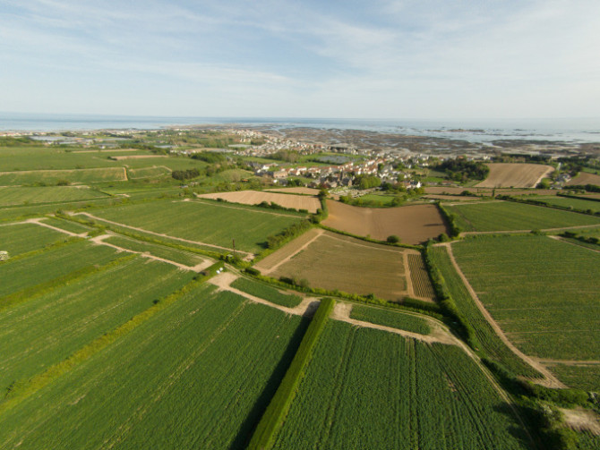 aerial_view_of_fields_in_st_clement_jersey